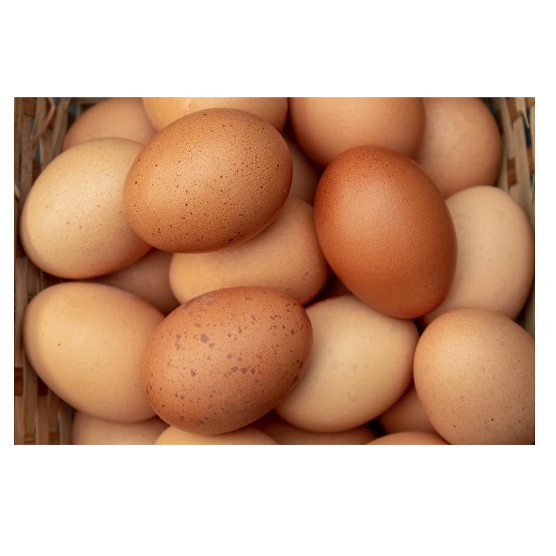 eggs-layer