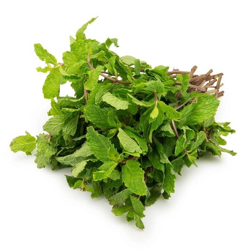 mint-leaves-pudina-pata